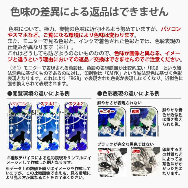 【ルナティックキャットイズム】配送について7