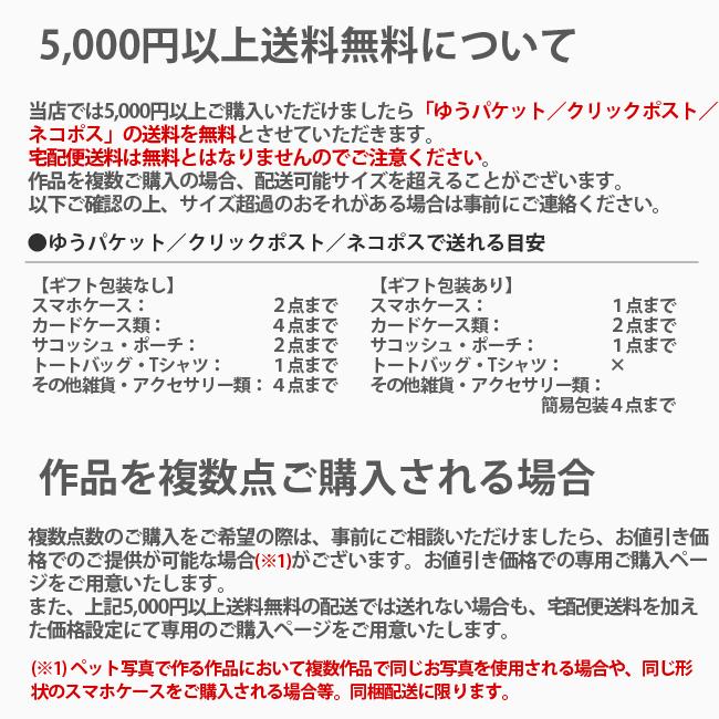 【ルナティックキャットイズム】配送について8